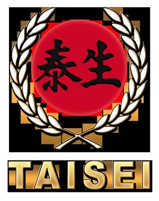 TAISEI – Karate Gi – Made in Japan